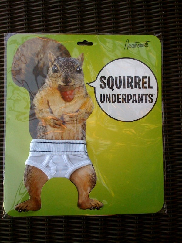 squirrelphoto